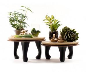 bambbo tray 9